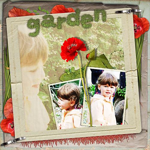 garden-2.jpg